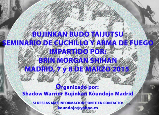 FLYER CURSO MADRID BRIN 2015
